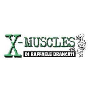 x-muscles